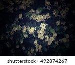 white flower pattern vintage | Shutterstock . vector #492874267