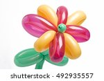 Balloon Flower With Pink And...