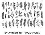 hand drawn vector vintage... | Shutterstock .eps vector #492999283