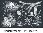 vector collection of hand drawn ... | Shutterstock .eps vector #493150297