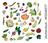 set colors elements vegetables... | Shutterstock .eps vector #493268377