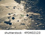 water pollution   plastic and... | Shutterstock . vector #493402123