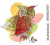 bird owl. decorative vector...   Shutterstock .eps vector #493501957