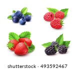 berry realistic set with...