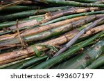 bamboo division   Shutterstock . vector #493607197