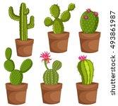 green desert plant nature... | Shutterstock . vector #493861987