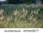vintage retro flowers background | Shutterstock . vector #493965877