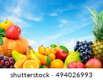 large collection of fruits and... | Shutterstock . vector #494026993
