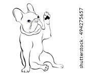 dog  vector  breed  cute  pet ... | Shutterstock .eps vector #494275657