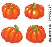 autumn collection of pumpkin... | Shutterstock .eps vector #494403217