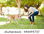Stock photo profile view of a beautiful young woman about to throw a ball for her dog while playing at the park 494495737