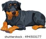 illustration of beautiful... | Shutterstock .eps vector #494503177