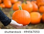 Close Up Of Small Pumpkin Bein...