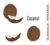 vector illustration of coconut   Shutterstock .eps vector #494644033