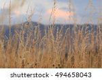 fields | Shutterstock . vector #494658043