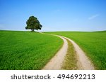 farm track leading through... | Shutterstock . vector #494692213