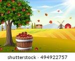 Apple Tree And Basket Of Apple...
