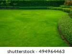 green lawn with trees planted... | Shutterstock . vector #494964463