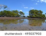 water reflection | Shutterstock . vector #495037903