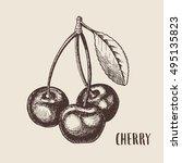 hand drawn sketch style cherry... | Shutterstock .eps vector #495135823