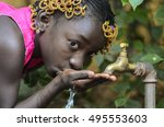 beauty of africa drinking clean ... | Shutterstock . vector #495553603