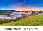 amazing sunrise at golden hill  ... | Shutterstock . vector #495570697