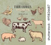 farm animals vintage collection ... | Shutterstock .eps vector #495826687