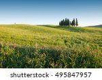 tuscany landscape with cypress... | Shutterstock . vector #495847957