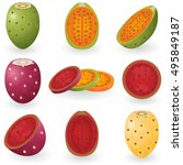 Illustration Of Prickly Pear...