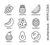 basic fruits thin line icons... | Shutterstock .eps vector #495912283
