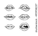 hand drawn vector illustrations ... | Shutterstock .eps vector #495958237