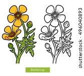 coloring book for children ... | Shutterstock .eps vector #496040893
