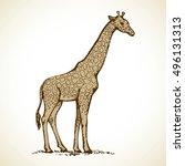 Giraffa Camelopardalis Is...
