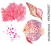 watercolor colorful set fish... | Shutterstock . vector #496296037