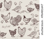 farm birds seamless pattern.... | Shutterstock .eps vector #496481647