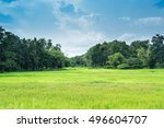 farm rice landscape and clouds... | Shutterstock . vector #496604707