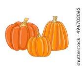 pumpkin. vector illustration. | Shutterstock .eps vector #496702063