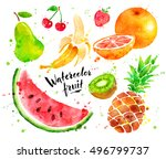 hand painted watercolor... | Shutterstock . vector #496799737