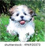 Puppy On Meadow. Digital...