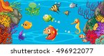 fish on coral reef | Shutterstock .eps vector #496922077