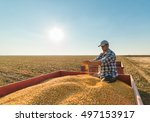 Young Farmer In Corn Fields