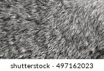Gray Rabbit Fur As Background