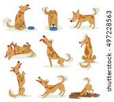brown dog set of normal... | Shutterstock .eps vector #497228563