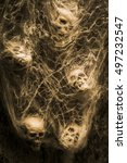 Small photo of Creative sepia horror art of human skulls hanging in spider webs. Web of entrapment