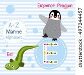 cute children sea alphabet... | Shutterstock .eps vector #497244457