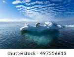 a polar bear sitting on the... | Shutterstock . vector #497256613