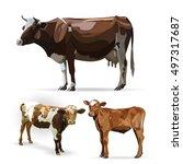 Cow Calf Brown  Vector