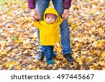 father and son walking. baby... | Shutterstock . vector #497445667