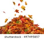 Pile Of Autumn Colored Leaves...