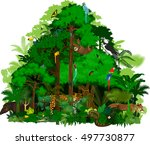 rainforest vector illustration. ... | Shutterstock .eps vector #497730877